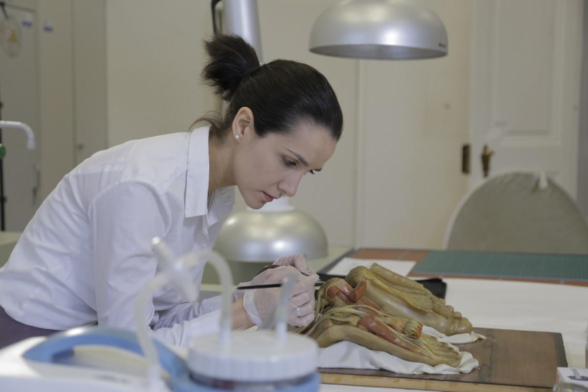 Restauratorin Martina Peters mit einem josephinischen Wachsmodell